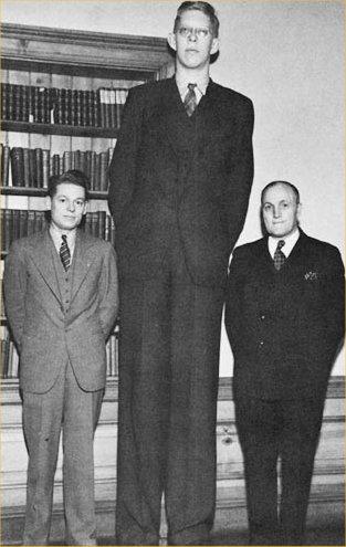 World's Tallest Man...... - Pegham - Seekho Aur Sikhao!